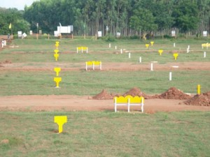 dtcp-plots-sale-raj-7be84